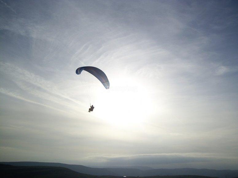 Flying like a bird