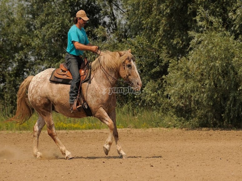 Horseback riding in Monterrey
