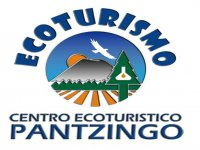 Pantzingo Campamentos Multiaventura
