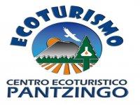 Pantzingo