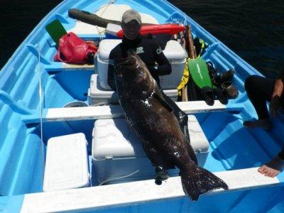 Pesca deportiva para 5 personas 4 horas Cancún