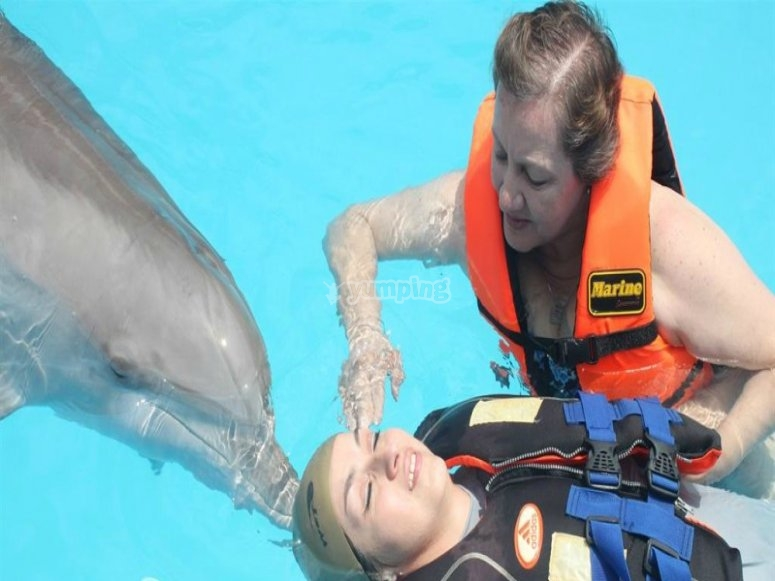 Therapy with dolphin