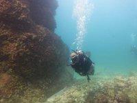 Descubre un mundo maravilloso en las aguas de Ixtapa