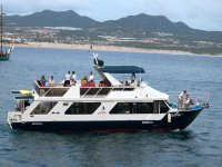 Boat trips on our catamarans
