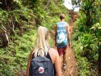 Caminata entre la selva