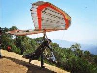 Full-speed delta wing