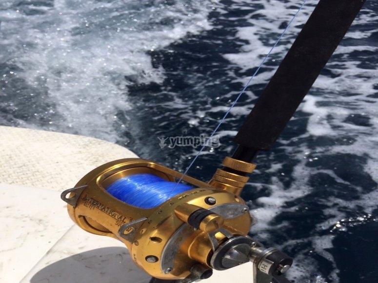 Linea de pesca