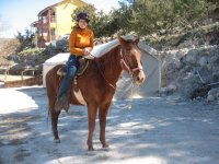 on horseback to the ride