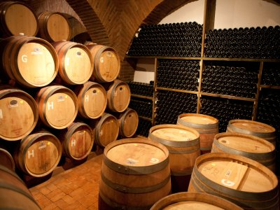 Ruta del vino y el queso en Querétaro