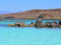 Boat ride to Coronado Island, 4 hours