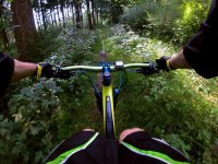 Mountain bike through the jungle