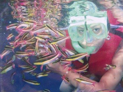 Snorkel para grupos en Huatulco
