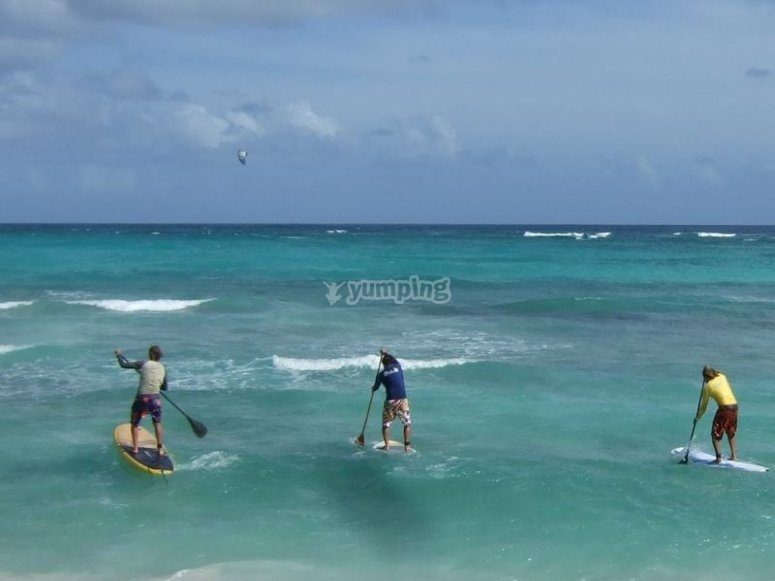 Learn to keep your balance and paddle on the board across the sea