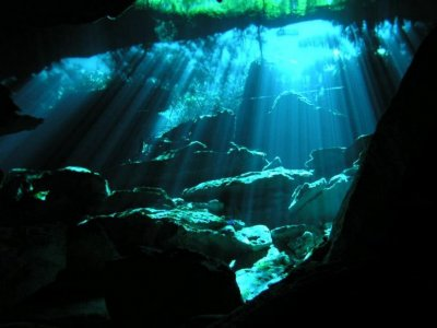 Snorkel con tortugas y cenote Quintana Roo