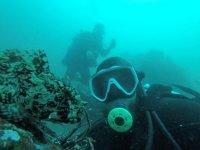 Diving tour beaches Ensenada with material 3h