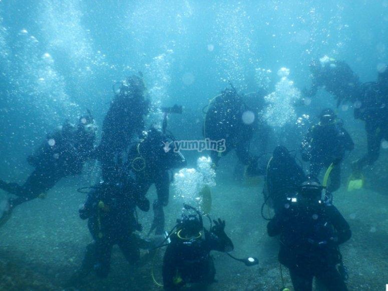 Curso Open Water Diver en Rosarito