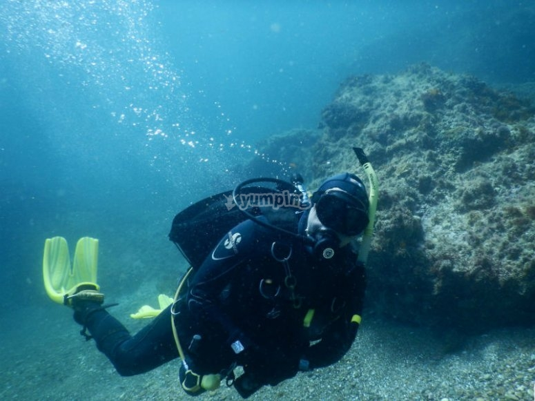 Explore the seabed while you are learning