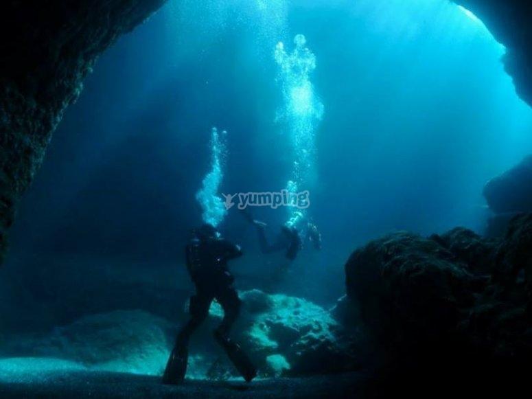 Explora el mar de Rosarito con nosotros