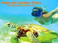 Playa del Carmen Tours Buceo