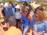 Wine tourism route