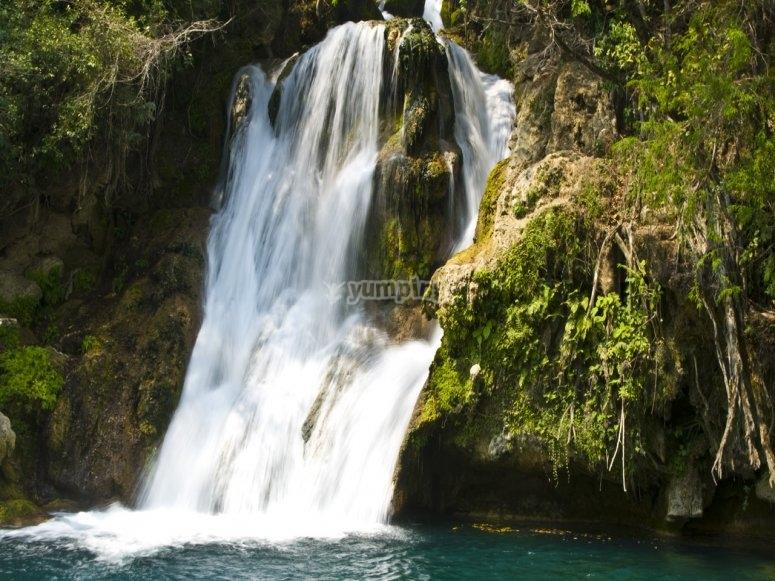 Visita a la cascada de tamasopo