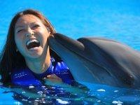 Encuentro con delfines precio adulto Los Cabos