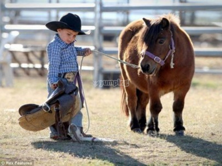 Tu cumple en compañia de un pony