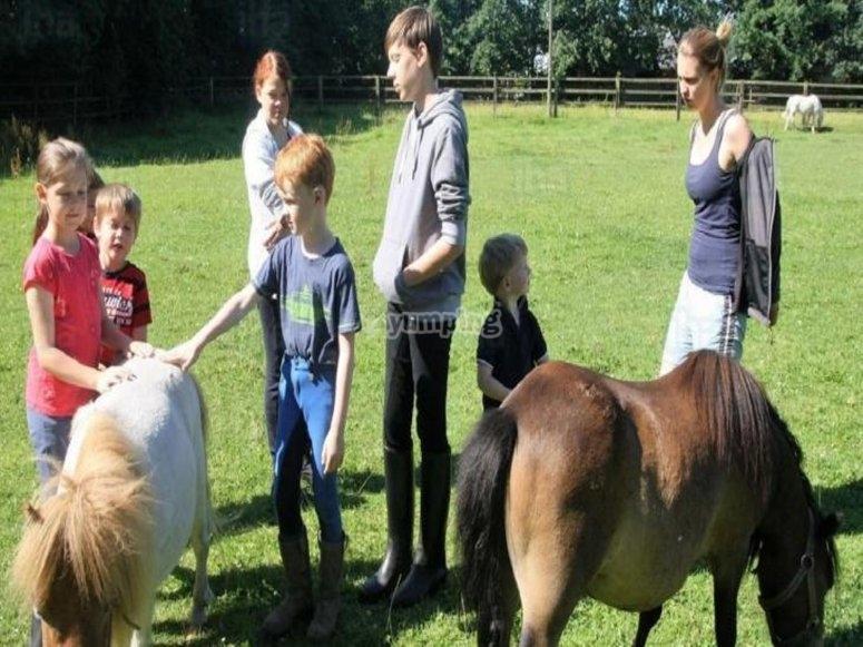 Toda la familia conociendo a nuestros ponis