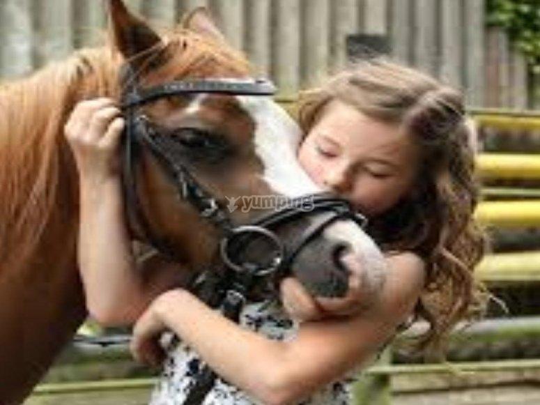 Se enamoraran con nuestros increibles ponis