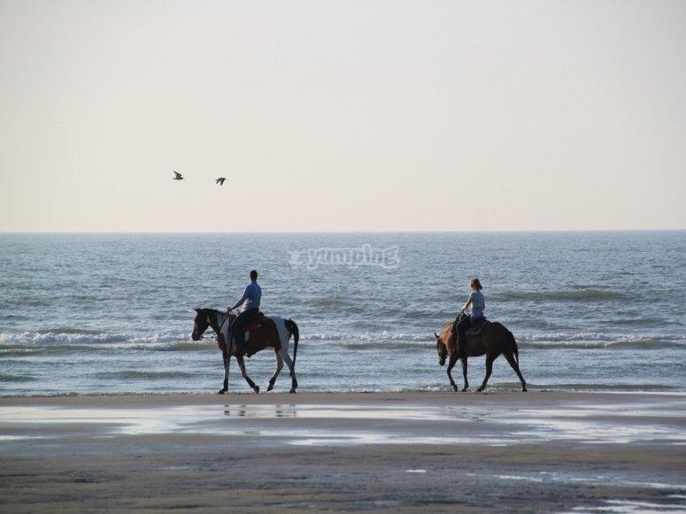 ride at the beach