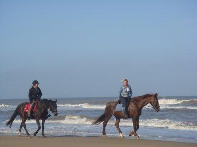 Horse ride in Riviera Nayarit