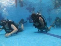 Diving lessons in our facilities
