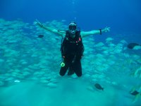 Learn to dive with us