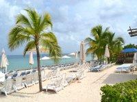 Visita parque tematico y acuatico en Cozumel