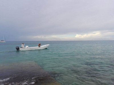 Blue Dream Cozumel Pesca