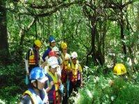 Incursionistas por el bosque