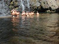 Un chapuzon en la cascada