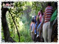 Ecoturismo Paseo en Caballos
