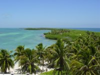 Visit Isla Contoy and Isla Mujeres 4 nights 5 days