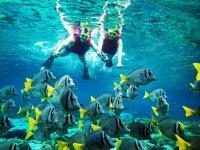 snorkel in Huatulco