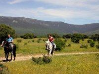 Paseo guiado a caballo