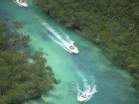 NAVEGANDO en los manglares