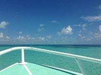 Paseo en barco en la riviera maya