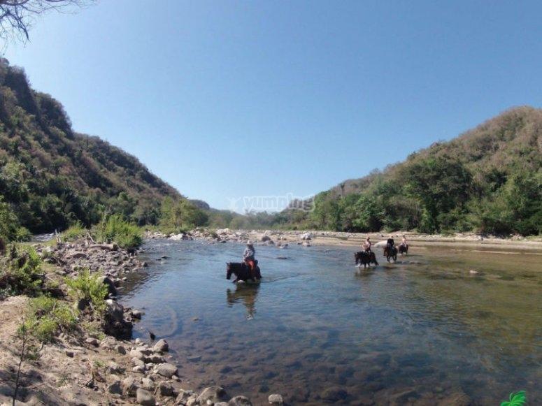 Horseback riding through jungle