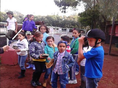 Horseback riding classes in Cuajimalpa
