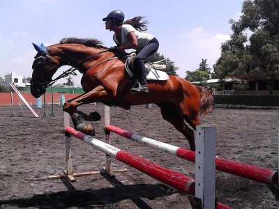 Monthly horseback riding classes, Cuajimalpa