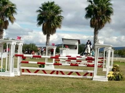 Horseback riding school registration in Xochimilco
