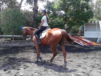 4 horseback riding classes in Xochimilco School