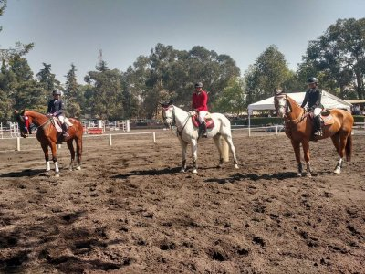 1month horseback riding class in Xochimilco School