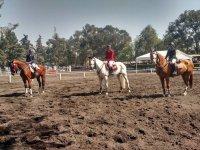 Horseback riding school